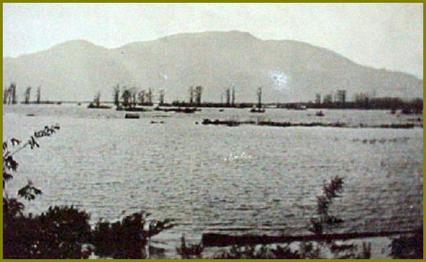 Sumas Lake Looking North toward Sumas Mountain - 1910